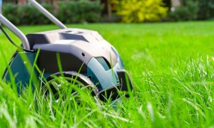Comment bien scarifier sa pelouse en 4 étapes ?