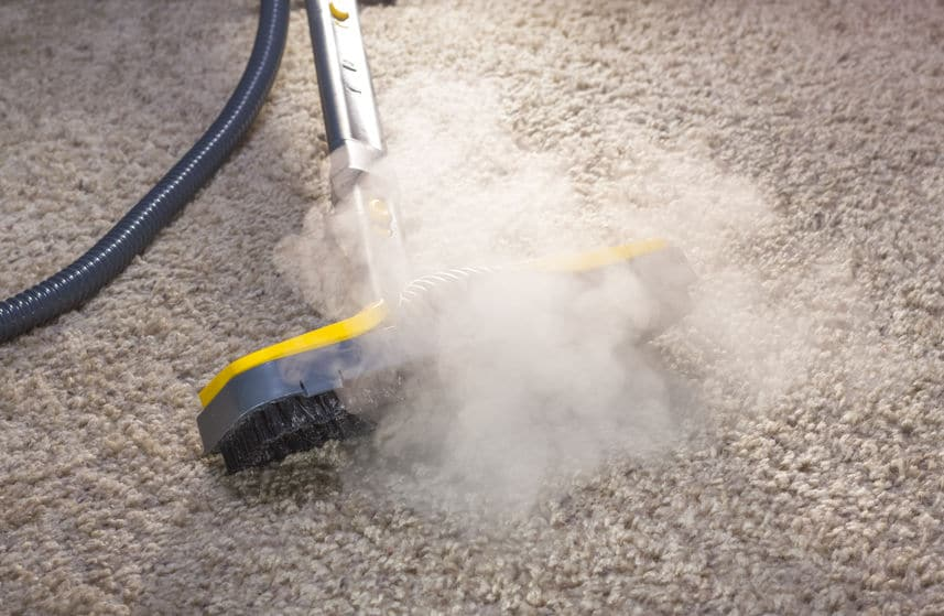 nettoyeur vapeur sèche