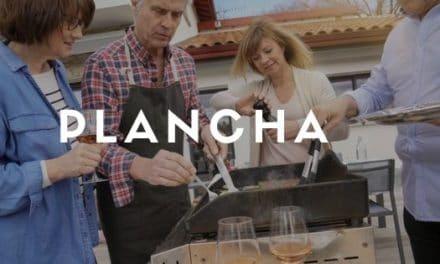 Plancha : guide d'achat