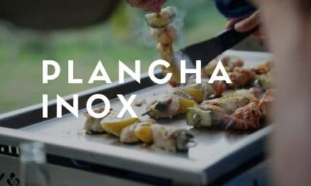 Plancha inox : guide d'achat